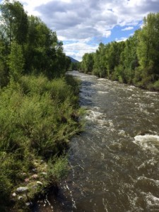 The Roaring Fork River, right behind our office.