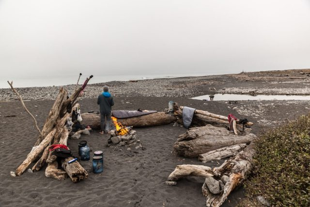People Around Campfire on Beach