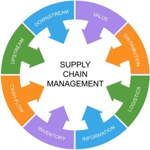 Green Supply Chain Management: Strategies for Success