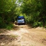 VW LT 4x4 im Dschungel