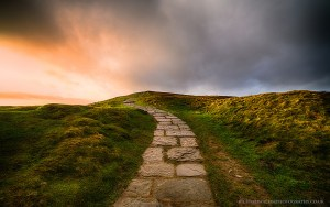 Finding the golden path to digital transformation