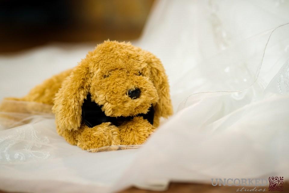 puppy on wedding day
