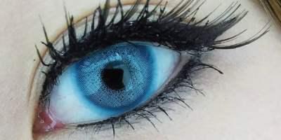 Sweety batis blue closeup