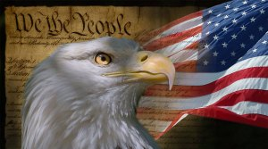 USA Flag Co. We The People