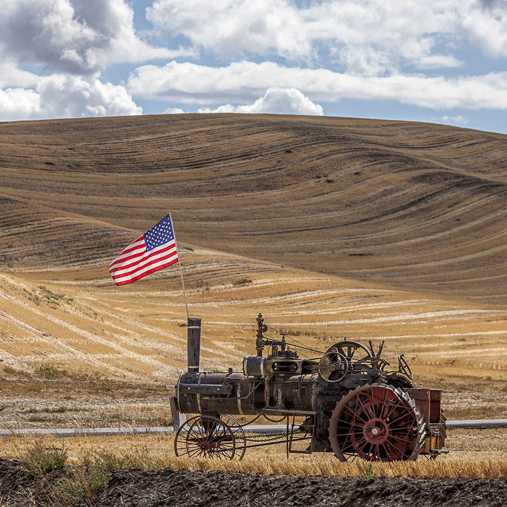 ALL AMERICAN! Steam engine and American Flag in field at the Colfax Threshing Bee in Colfax, Washington.