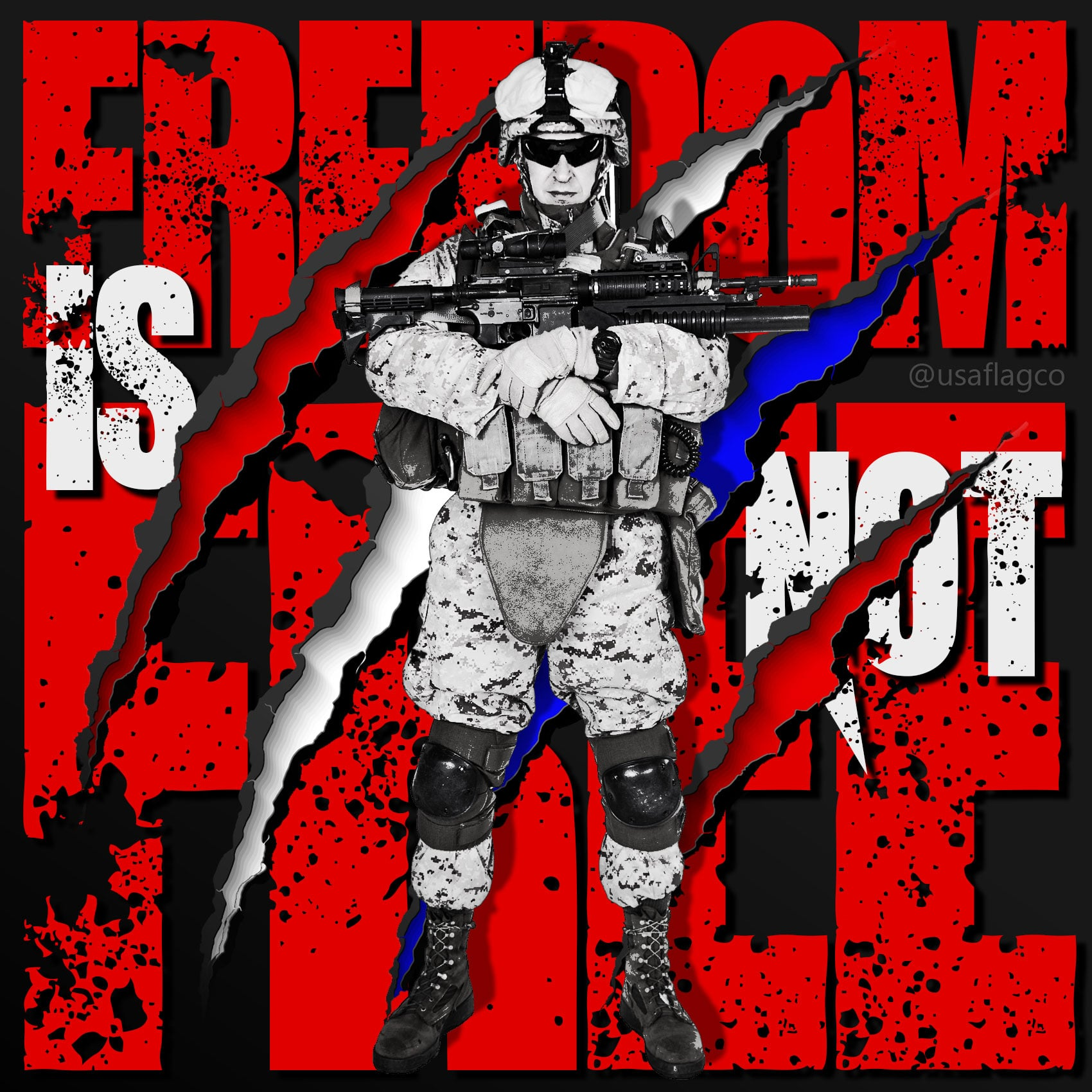 """Freedom Is Not Free: USMC by USA Flag Co. """"It doesn't take a hero to order men into battle. It takes a hero to be one of those men who goes into battle."""" – General Norman Schwarzkopf Jr."""
