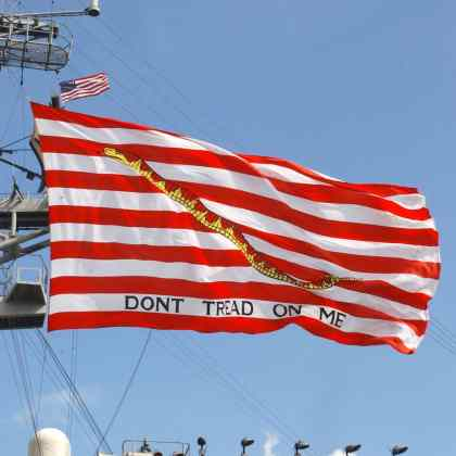 First Navy Jack: Don't Tread On Me