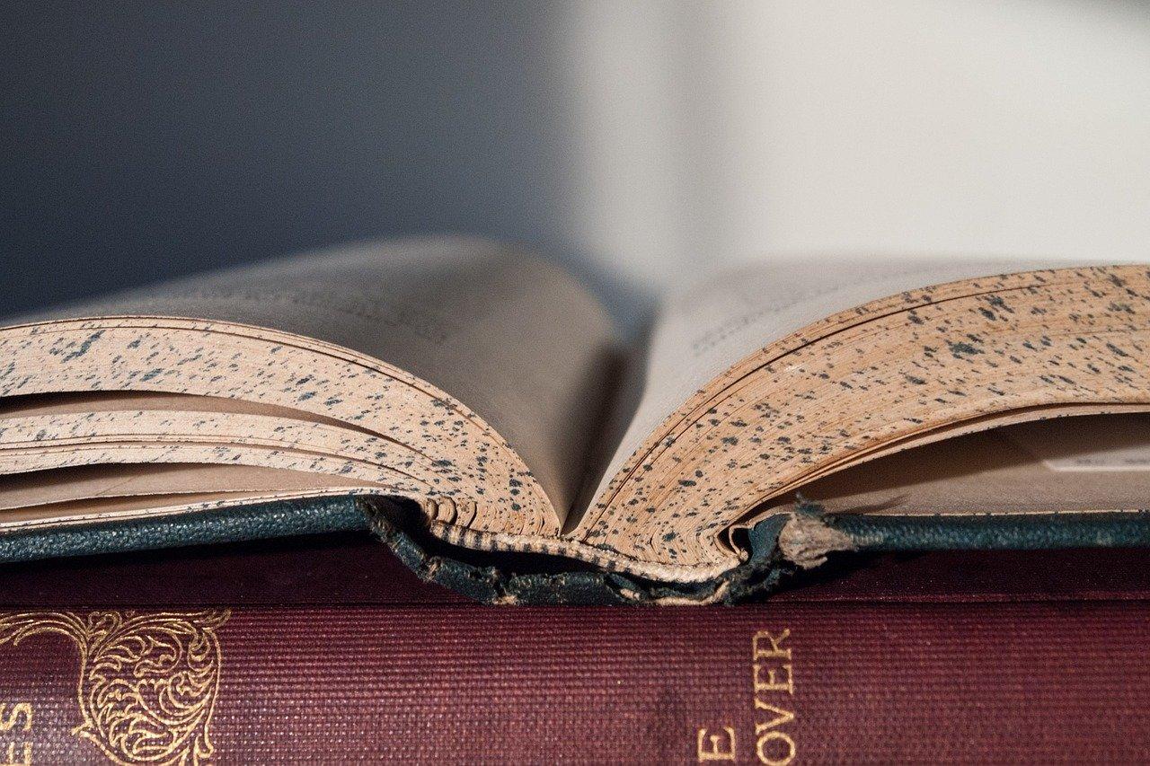 libro, lectura, pedagogía