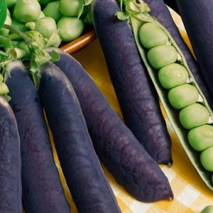 Vegetable Variants: Exciting New Vegetables to Spice Up Your Plate