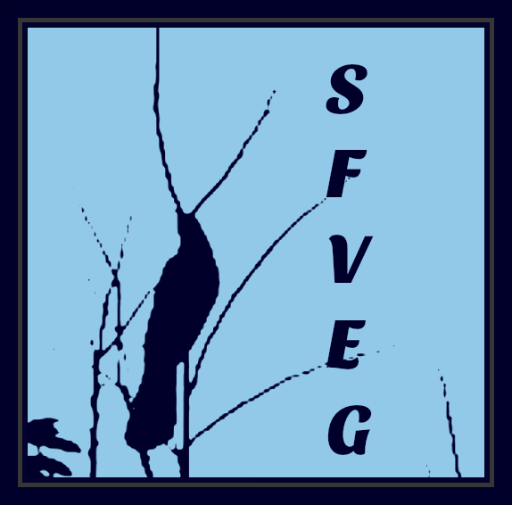sfveg-blog-avatar