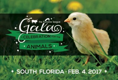 Humane-League-South-Florida-Gala-800x544
