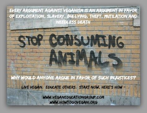 vegan argument new 11.13.16
