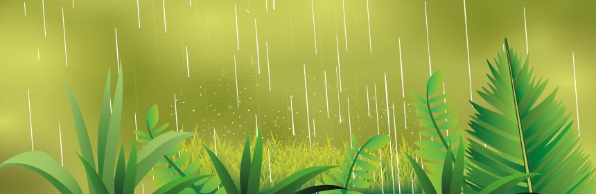 monsoon,