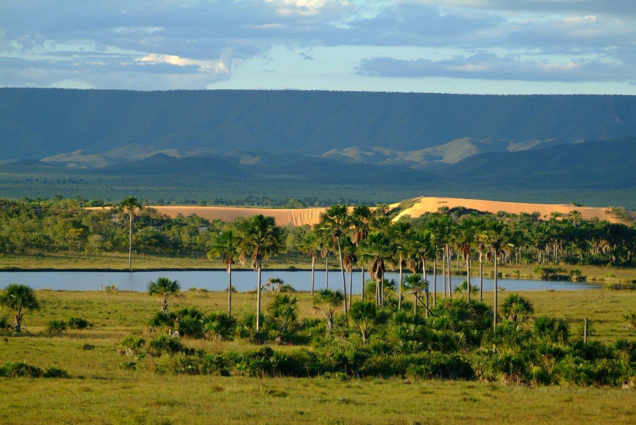 Ecoturismo no Jalapão é ver Dunas e veredas do cerrado