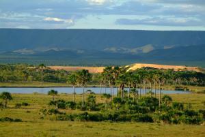 Uma paisagem surpreendente com dunas, buritizais e montanhas.
