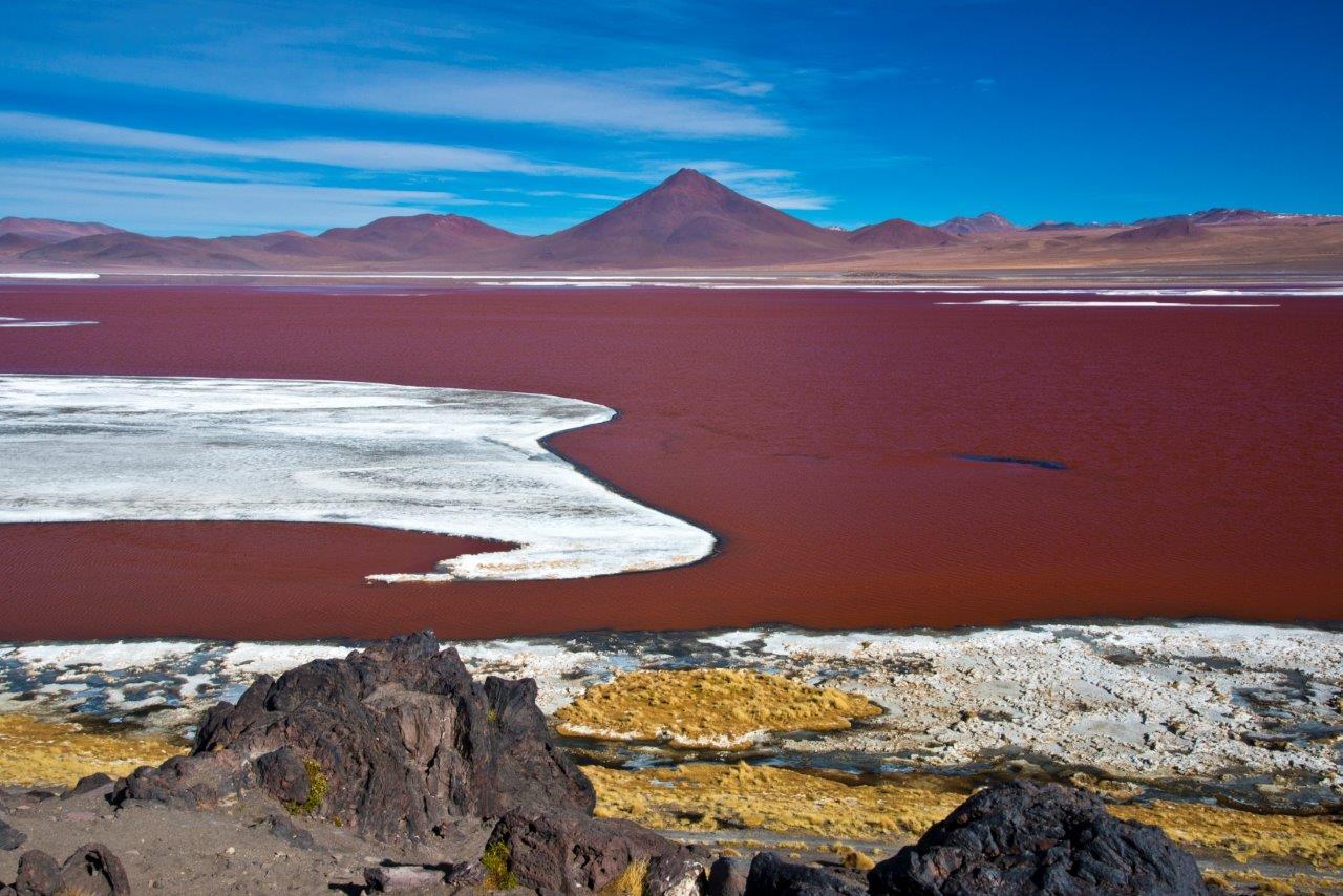 Viagens temáticas Salar de Uyuni - Laguna Colorada - André Dib