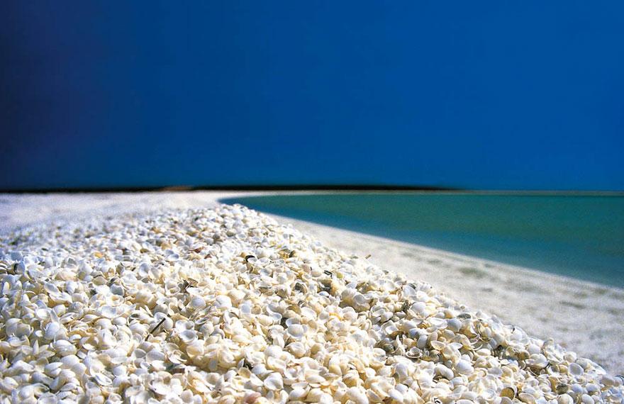 strangest-beaches-venuerific-blog-shell-beach-shark-bay-australia