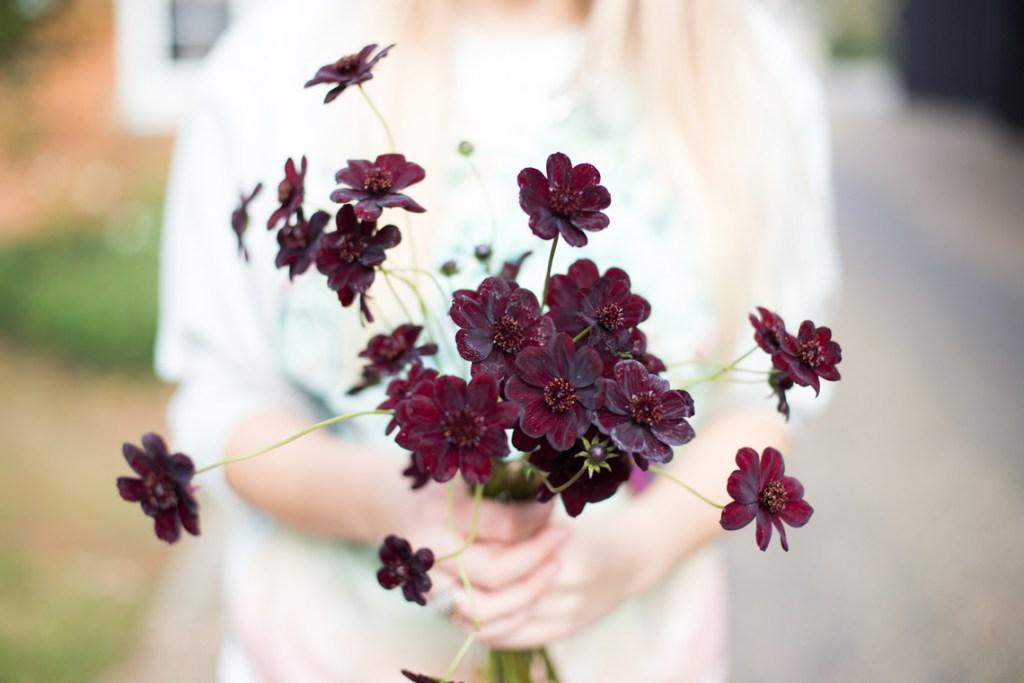 Perfect-wedding-flower-venuerific-blog-the-plain-jane-cosmos-dark-purple-flowers