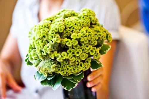 Perfect-wedding-flower-venuerific-blog-the-artsy-hipster-celosia-green-flower-bouquet