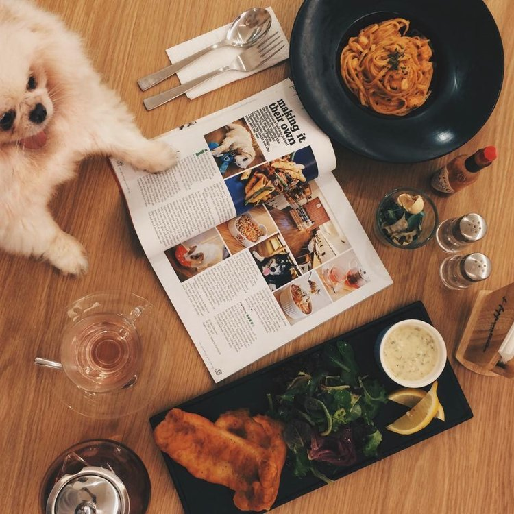 Dogs-birthday-venues-venuerific-blog-happenstance-cafe-human-food