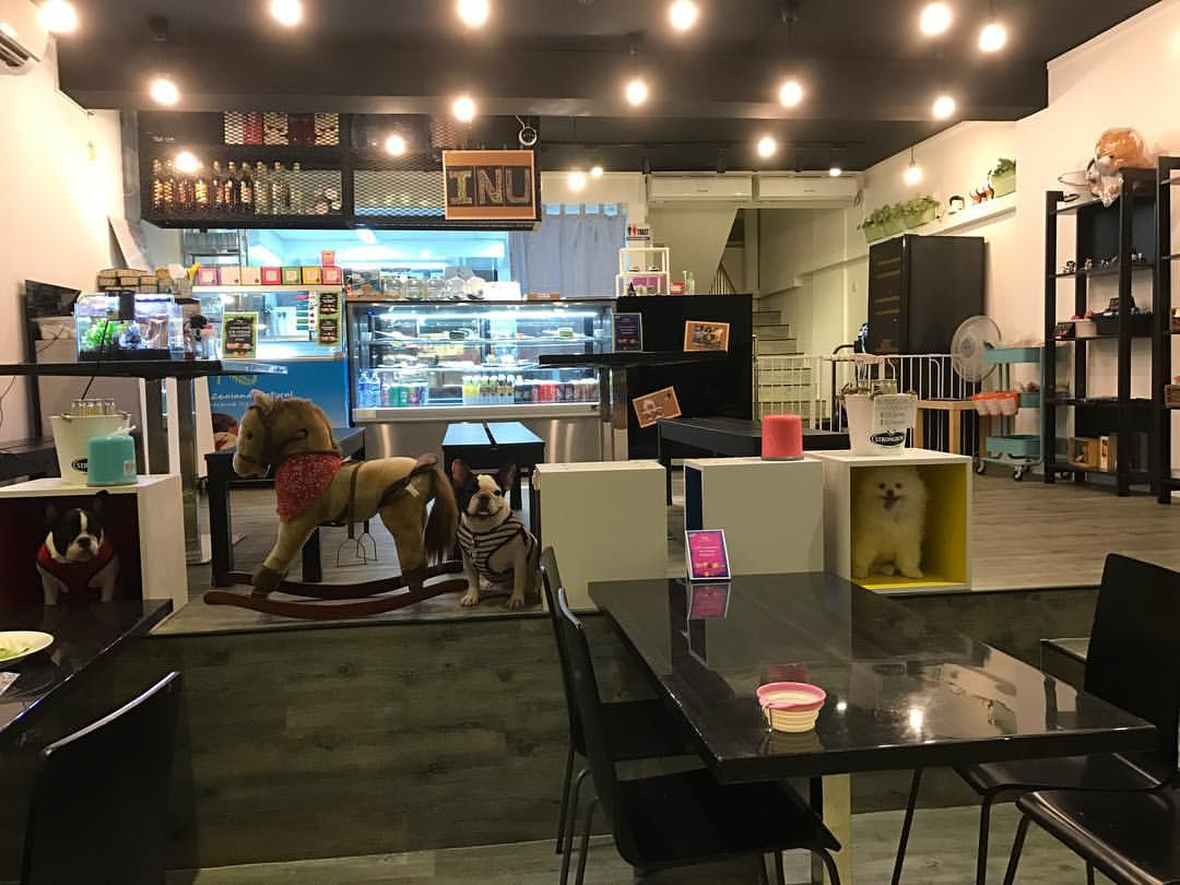 Dogs-birthday-venues-venuerific-blog-INU-pet-friendly-cafe
