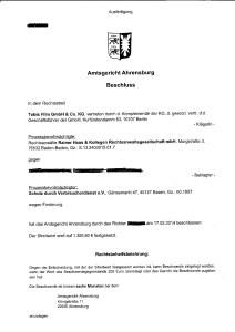 Beschluss Rainer Haas Kollegen