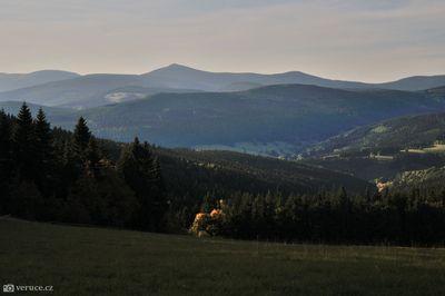 Krkonoše Rýchory - Dvorský les