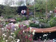 Астрономический сад