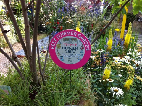 Выставка во дворце Хэмптон-Корт 2014