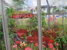 Lust - Peep Show