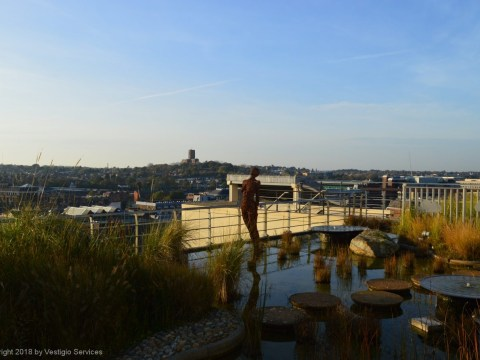 Джеффри Джеллико: водный сад, вдохновленный спутником