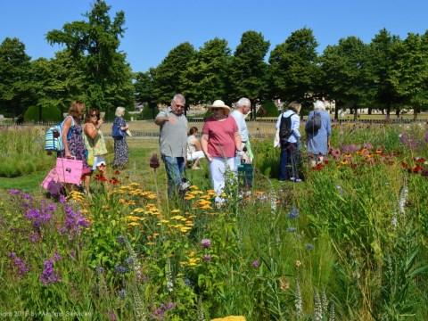 Пит Удольф на выставке Хэмптон-Корт: Iconic Horticultural Heroes