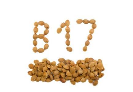 Alternative Krebstherapie: B17 und B15