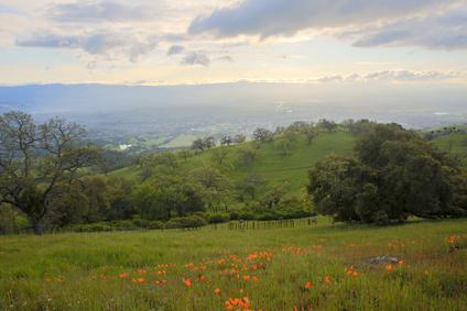 Santa Clara Valley from Joseph D. Grant Country Park, Northern California
