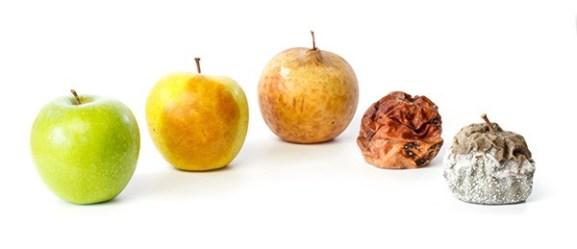 Reduce Oxidative Stress   Protandim UK - Vital Âtman Blog