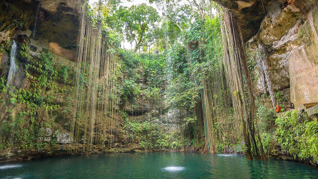 15 Mejores Cenotes en México