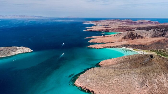 ¿Qué Playas visitar en la Paz? - Isla Espíritu Santo