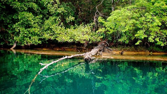 Laguna de Miramar