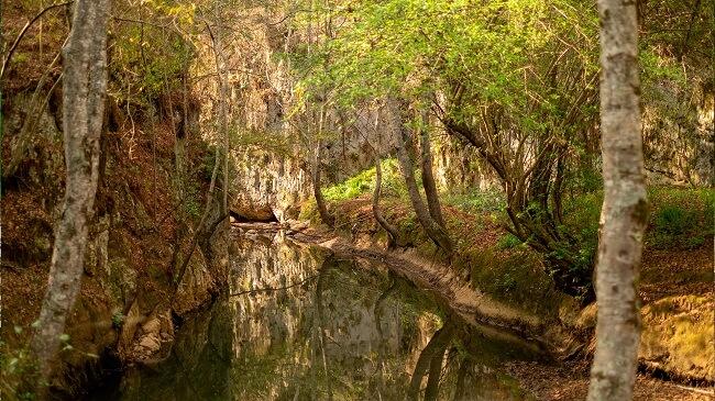 Parque Arcotete