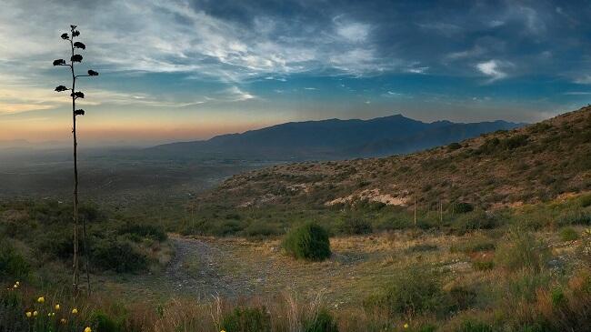 Paisaje Sierra Arteaga Coahuila