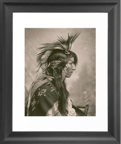 A Cree in Profile via Dot and Bo