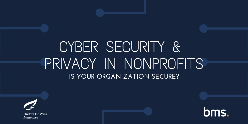 Cyber Security & Privacy in Nonprofits – Is your Organization Secure? by BMS Group
