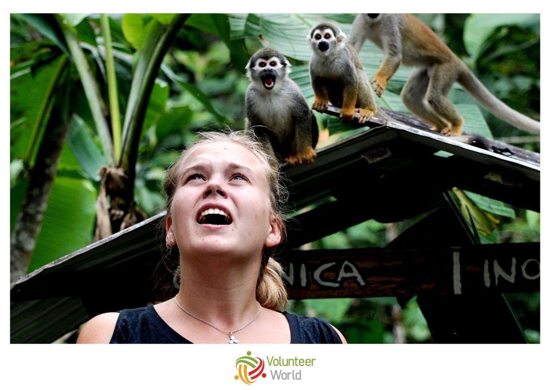 Bénévole en Amazonie Brésil