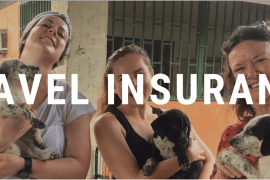 travel insurance flat Travel Insurance   Instant Quote & Cover