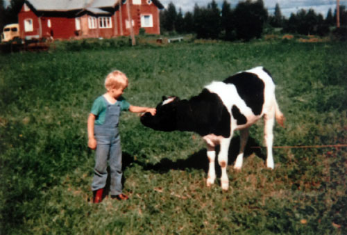 Me, age six, at the farm with a bull calf called Musta Mökö (Black Grump).