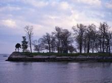 Cove Island Park
