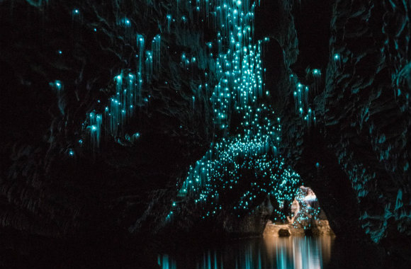 Waitomo Glowworm Caves in New Zealand