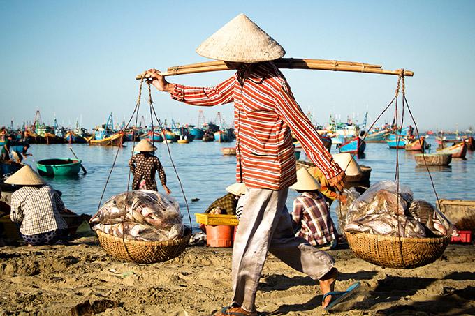 рыботорговец