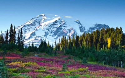 Paradise, Mount Rainier
