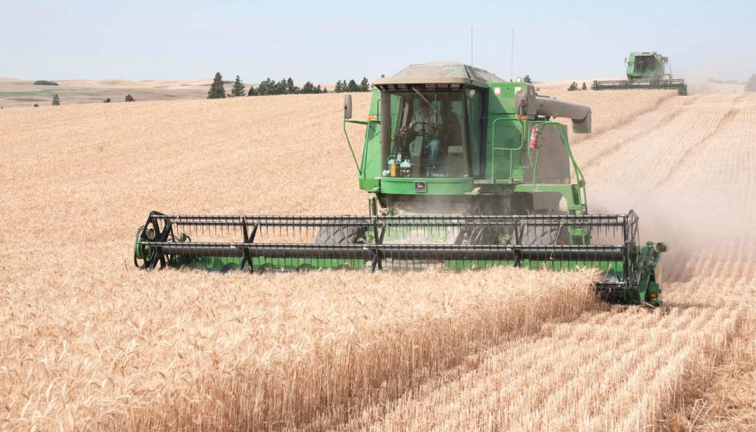 Combines harvesting wheat in the Palouse